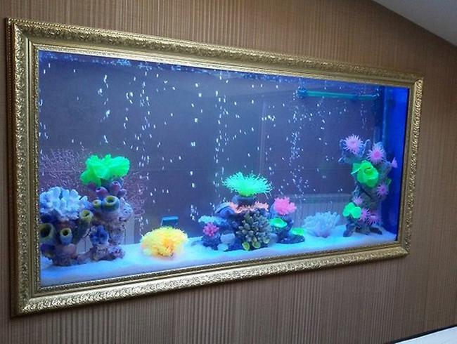 Виды аквариумов морских
