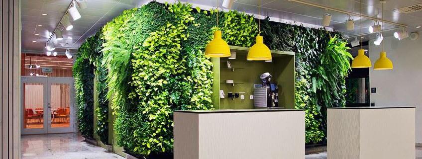 Компактное размещение озеленения