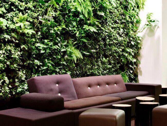Озеленение места отдыха