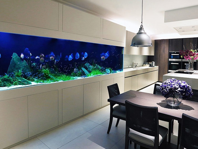 Заказать аквариум под мебель в квартире