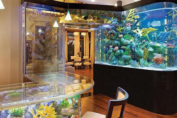 Большой выбор аквариумов на заказ для всех комнат