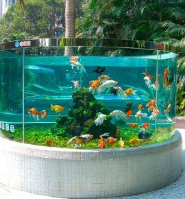 Морской аквариум в Харькове для дизайна интерьеров