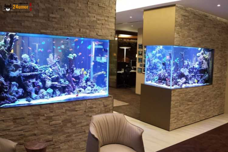 Заказать в Харькове аквариум под интерьер