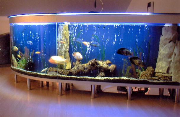 Аквариум для торговли рыбой