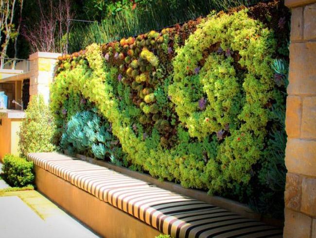 Установка вертикального озеленения
