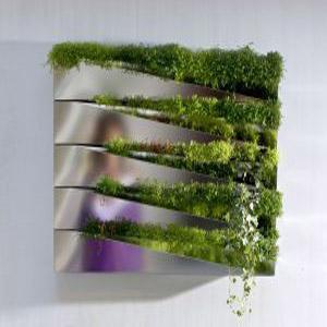 Ультрамодный контейнер для растений