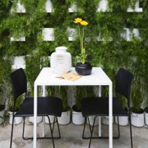 Стена из фитомодулей с зеленью